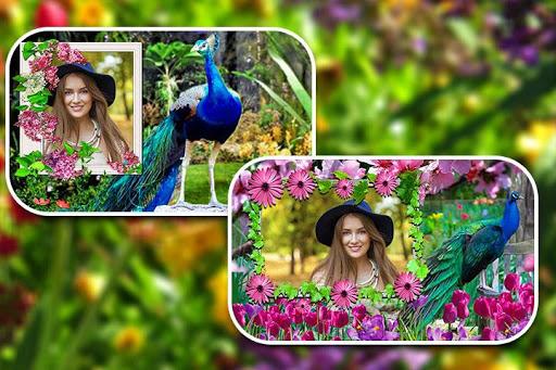Peacock Photo Frames screenshot 5