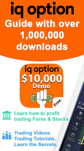 Forex Trading IQ Option Guide screenshot 1
