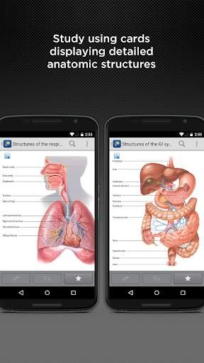 Anatomy & Physiology Made Easy 3 تصوير الشاشة