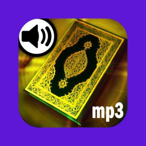 Kur'an-ı Kerim Meal Dinle
