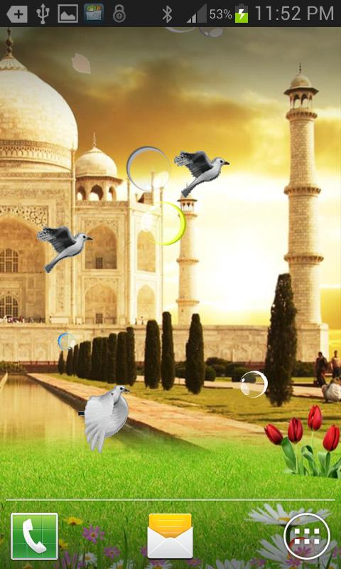Taj Mahal Birds Live Wallpaper 3 تصوير الشاشة