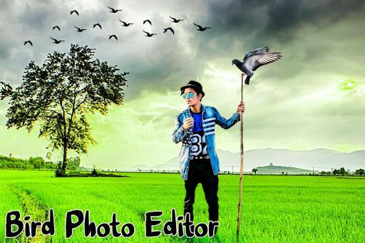 Bird Photo Editor screenshot 4