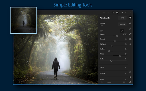 Adobe Lightroom - Photo Editor & Pro Camera screenshot 16