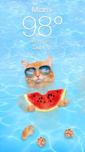 Weather Kitty - App & Widget Weather Forecast screenshot 2