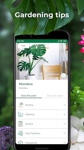 PlantSnap - FREE plant identifier app screenshot 2