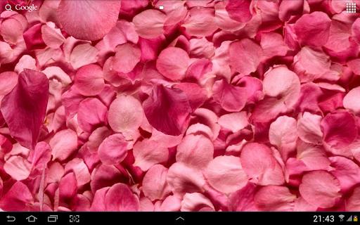 خلفيات بتلات حية ثلاثيةأبعاد 11 تصوير الشاشة