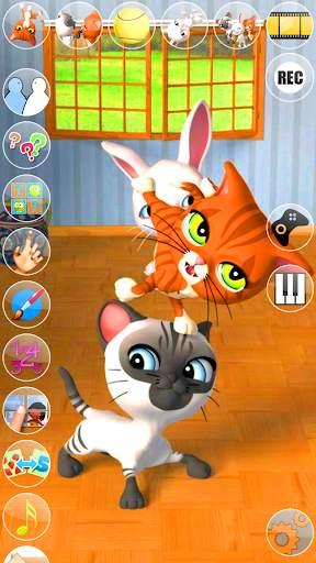 Talking 3 Friends Cats & Bunny screenshot 2