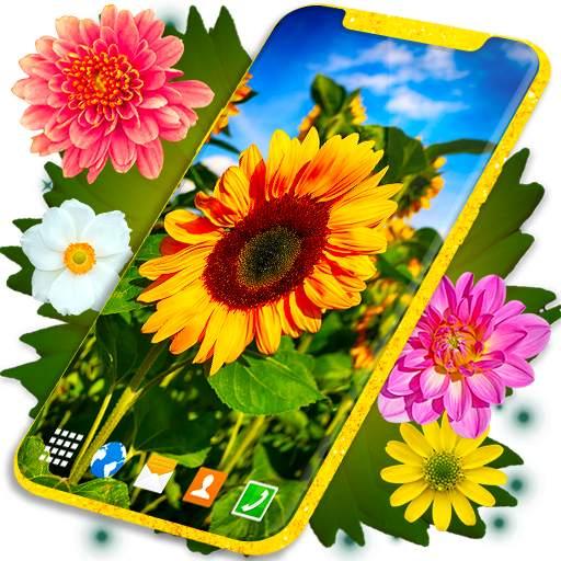 HD Summer Live Wallpaper 🌻 Flowers 4K Wallpapers