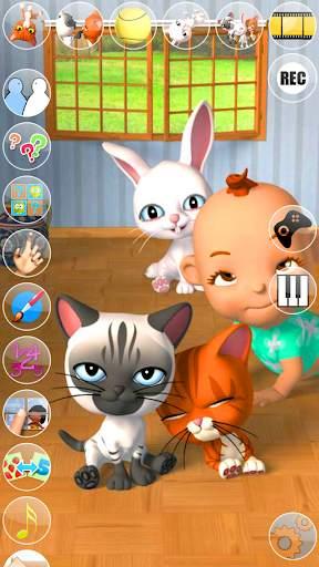 Talking 3 Friends Cats & Bunny screenshot 4