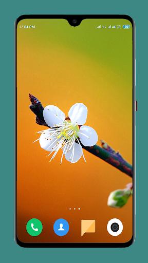 Flowers Wallpaper 4K screenshot 16