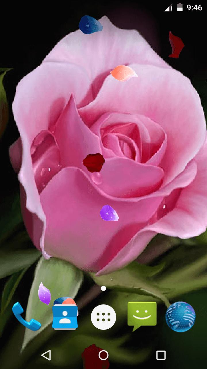 Magic Touch - Pink Rose Flower LWP скриншот 3