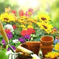 خلفيات متحركة حدائق 💚 الزهور للجدران لايف on 9Apps