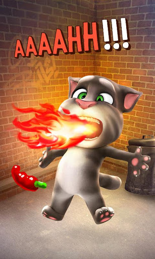 Talking Tom Cat screenshot 4