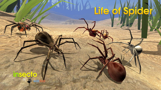 Life of Spider скриншот 2