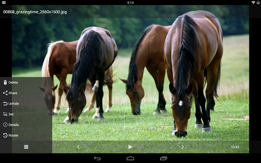 Hide Photos, Video and App Lock - Hide it Pro screenshot 9