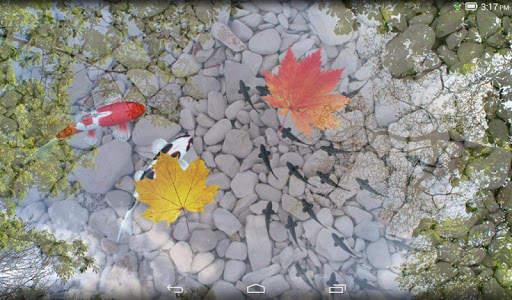 Water Garden Live Wallpaper screenshot 9