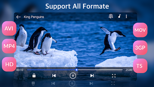 Full HD Video Player screenshot 2