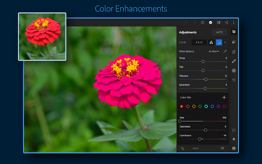 Adobe Lightroom - Photo Editor & Pro Camera screenshot 14