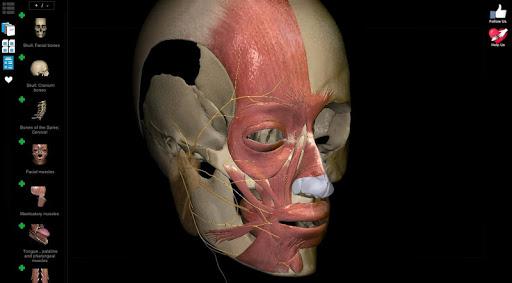 Anatomy Learning - 3D Anatomy Atlas screenshot 8