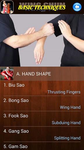 Wing Chun Kung Fu screenshot 2