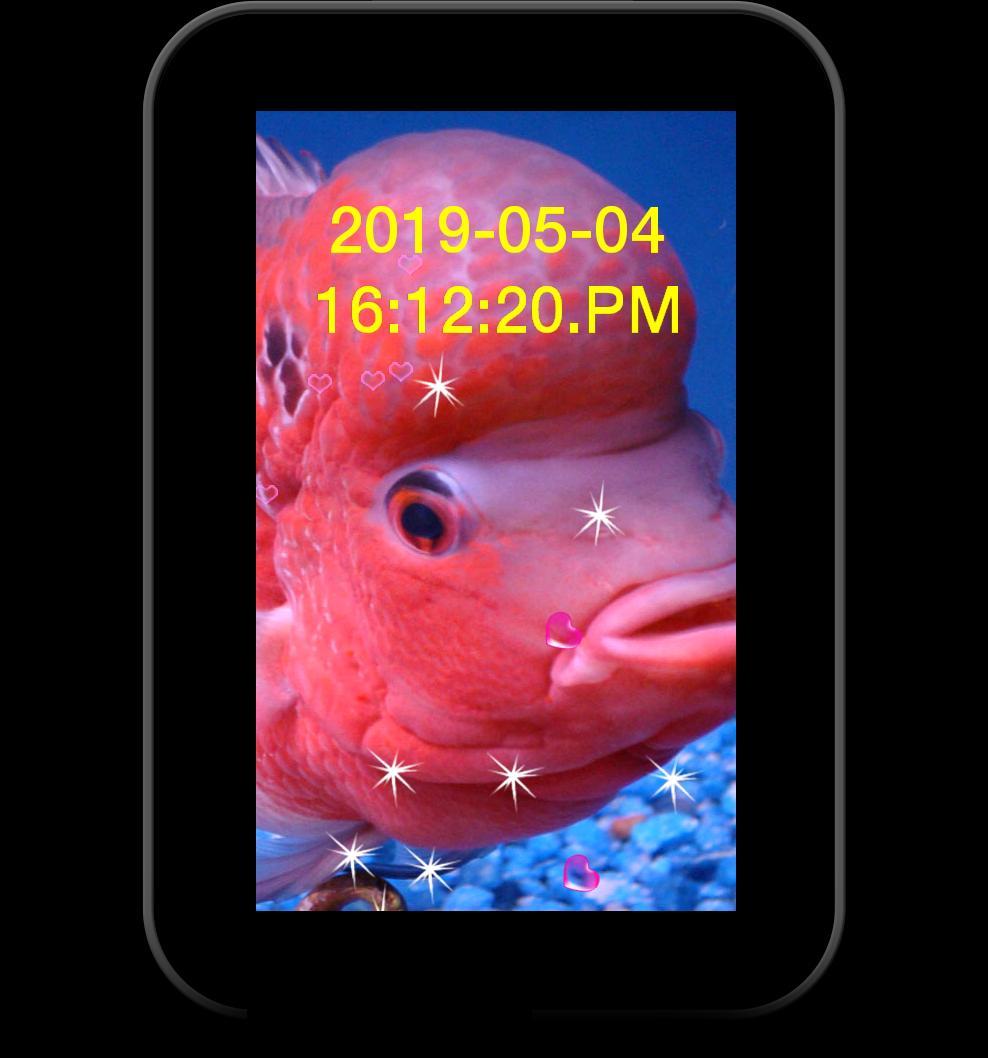 Flowerhorn Fish Special Live Wallpaper 10 تصوير الشاشة