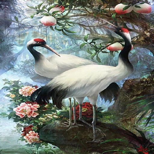 White Birds Live Wallpaper icon