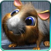 Nói hamster. on 9Apps