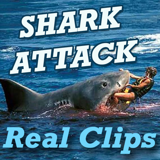 SHARK Attack Videos - Live Real Time Funny Clips أيقونة