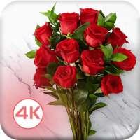 HD Rose Flowers Live Wallpaper on APKTom