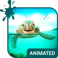 Cute Turtle Animated Keyboard   Live Wallpaper on 9Apps