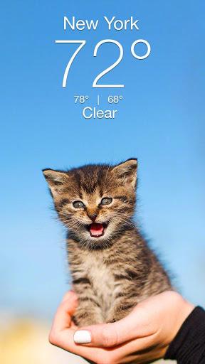Weather Kitty - App & Widget Weather Forecast screenshot 1