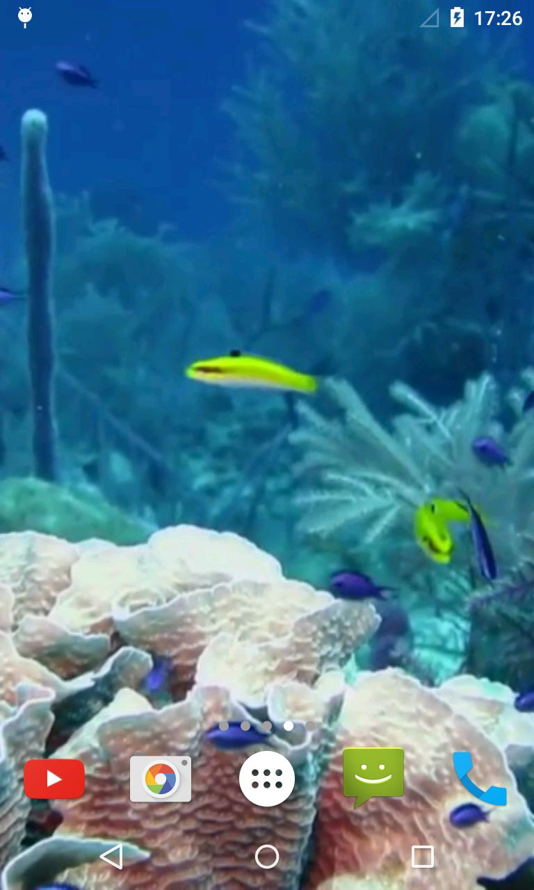 Marine Aquarium Live Wallpaper screenshot 3