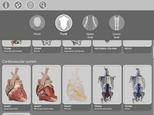 Anatomy 3D Atlas 17 تصوير الشاشة