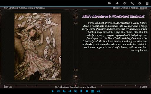 AlReader -any text book reader screenshot 18
