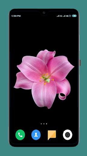 Flowers Wallpaper 4K screenshot 2