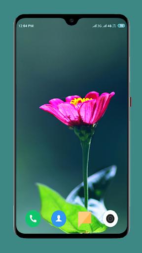 Flowers Wallpaper 4K screenshot 15