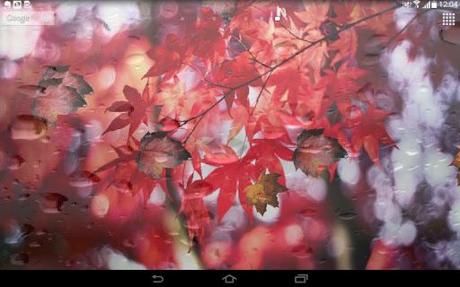 Spring Leaf wallpapers screenshot 4
