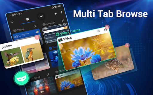 Web-Browser screenshot 10