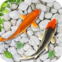 poisson vivre fond d'écran 2018 aquarium koi fond on 9Apps