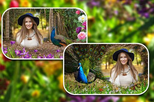 Peacock Photo Frames screenshot 2