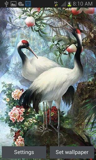 White Birds Live Wallpaper screenshot 1