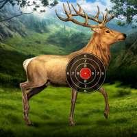 Deer Target Shooting on APKTom
