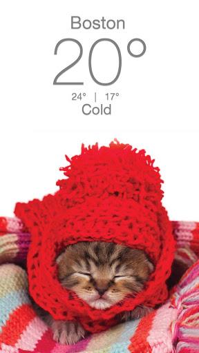 Weather Kitty - App & Widget Weather Forecast screenshot 5
