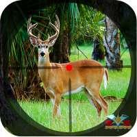 Safari Deer Hunting Africa: Best Hunting Game 2021 on APKTom