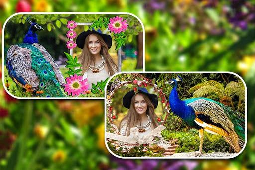 Peacock Photo Frames screenshot 12
