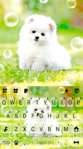 Cute White Puppy Keyboard Background screenshot 5