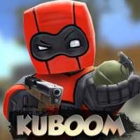 KUBOOM 3D: FPS Shooter on 9Apps