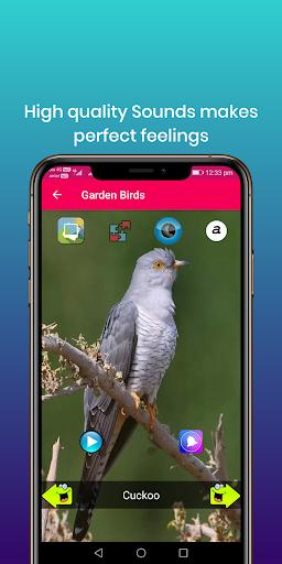100 suara burung: nada dering, wallpaper screenshot 18