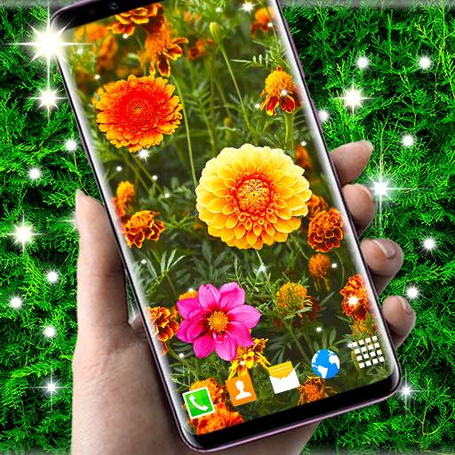 Autumn Flowers 4K Live Wallpaper ❤️ Forest Themes