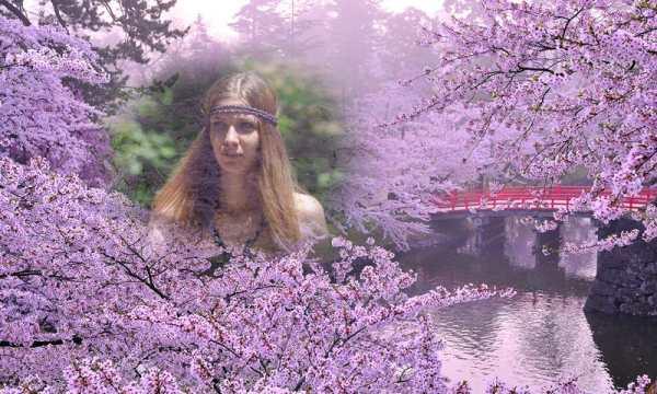 Transparent Photo Frames скриншот 4